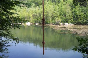 Rope Swings Delightful Or Dangerous